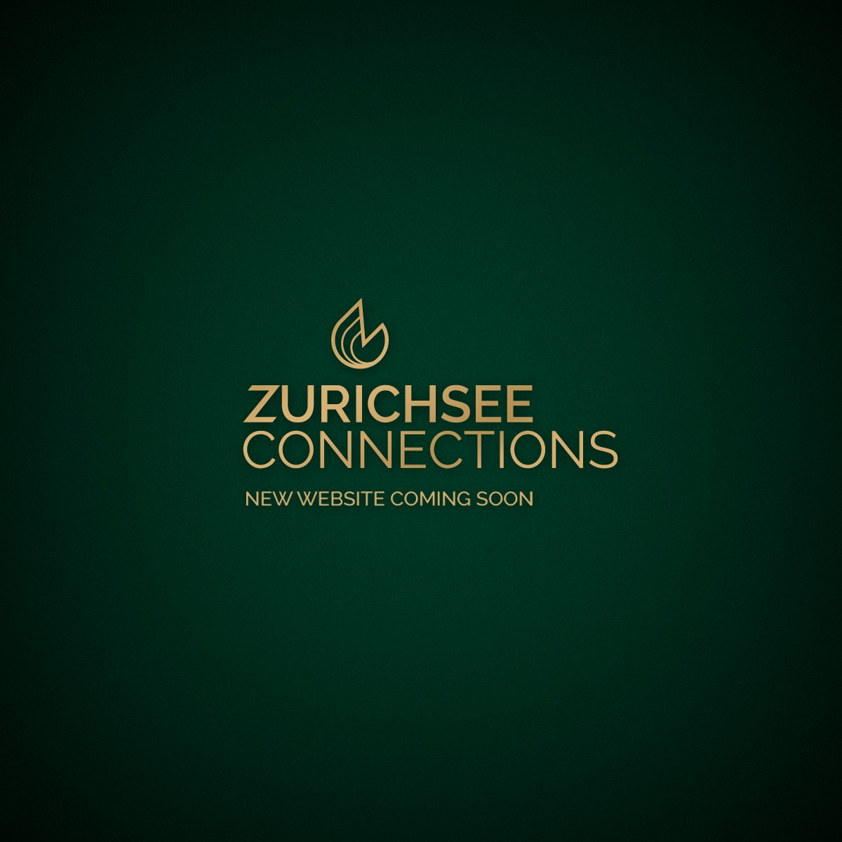 Zurichsee connections new website social booster